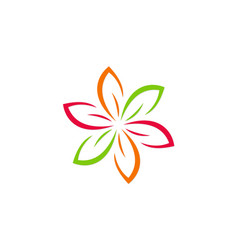 flower colorful abstract beauty logo vector image