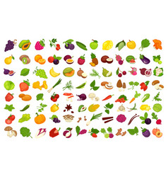 fruits vegetables berries and spices or vector image