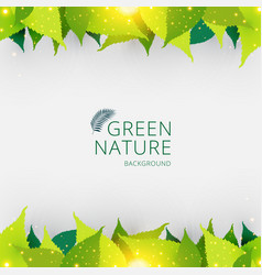 Template header or footer green leaves nature vector