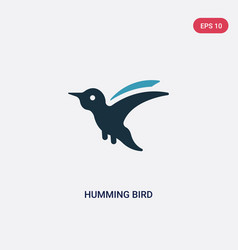 two color humming bird icon from animals concept vector image
