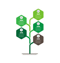 Vertical timeline infographics tree with leafs vector