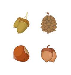 nuts icon set cartoon style vector image