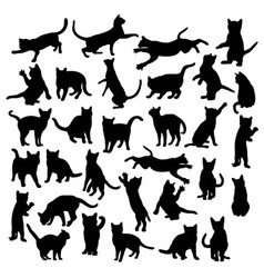 Aggressive Cats Silhouette vector image vector image