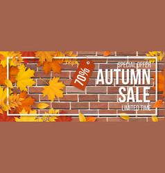 autumn sale fallen maple leaves frame red brick vector image