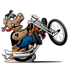 Biker hog on a motorcycle cartoon vector