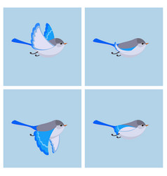 flying splendid fairy wren fem animation sprite vector image