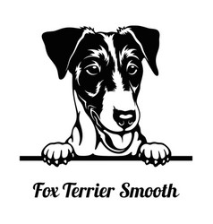 Peeking dog - fox terrier smooth breed - head vector