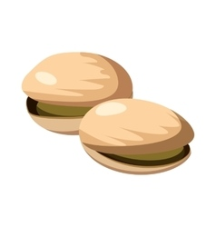 Pistachio nuts icon cartoon style vector