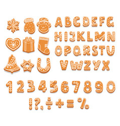 Set of gingerbread cookies alphabet numbers vector
