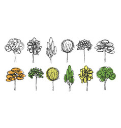 set of hand drawn trees on the white background vector image