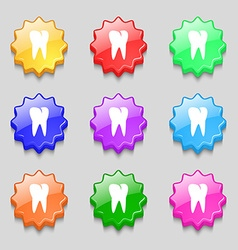tooth icon Symbols on nine wavy colourful buttons vector image