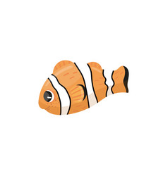 cartoon character of clownfish anemone fish in vector image