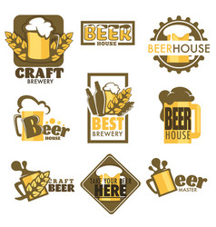 craft beer isolated icons mug with foam and barley vector image