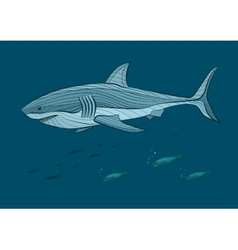 Decorative big white shark in the sea with fish vector