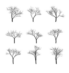 dry bare trees silhouette set vector image