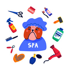 Pet grooming concept dog spa bulldog shower cap vector