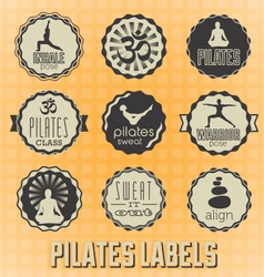 Pilates Labels and Icons vector image vector image