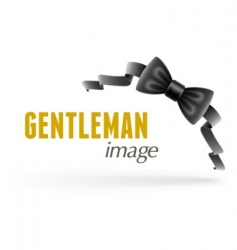 bow tie vector image vector image
