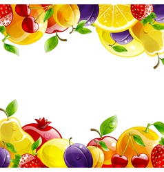 banner of fresh fruit vector image