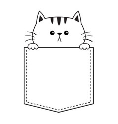 cat face in pocket holding hands doodle vector image