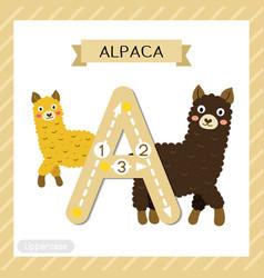 Letter a uppercase tracing alpaca vector