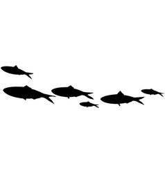 School of fish vector image vector image