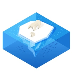 Isometric 3d of white bear vector image vector image