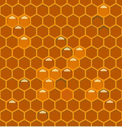 Bee hiveth vector