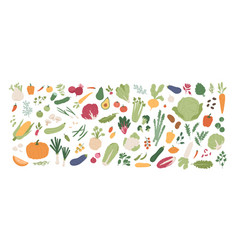 collection various vegetables isolated on white vector image