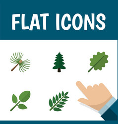 Flat icon natural set of park rosemary acacia vector