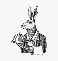 Hare waiter with a dish rabbit flunky or garcon vector