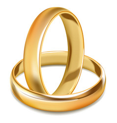 Plain smooth gold shiny wedding rings isolated vector
