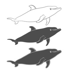 Set of with a dolphin vector