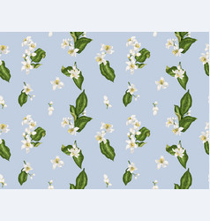 citrus branches seamless pattern with flowers and vector image