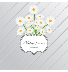 Daisy flowers and vintage label card vector