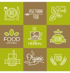 Label Organic and Natural Badges vector image