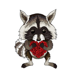 raccoon funny animal with red roses heart cartoon vector image