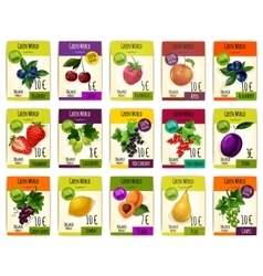 Fruit cards with price for farm market vector image vector image