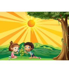 A girl and a boy looking at the plant vector image