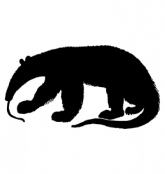 anteater silhouette vector image vector image