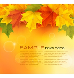 autumn background with autumn leaves vector image