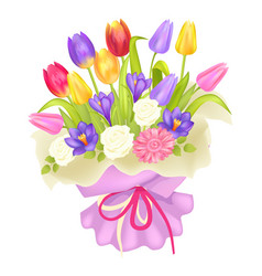 Bouquet of flowers in decor wrapping tulips crocus vector
