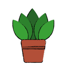 Potted plant flora decoration interior vector