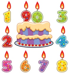 birthday candles and cake vector image