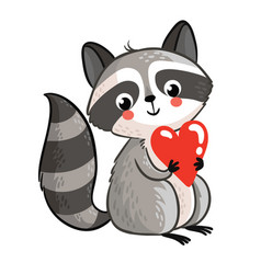 isolated raccoon holding in the hands of the heart vector image vector image