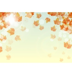 Abstract background of colorful autumn leaves vector image vector image
