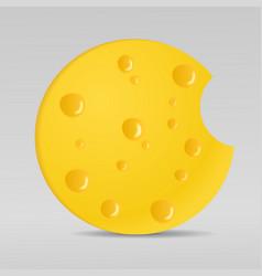 circle cheese vector image vector image