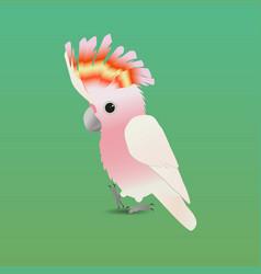 Cute major mitchells cockatoo vector