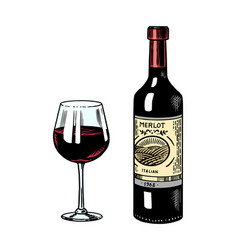Glass red wine and bottle still life vector