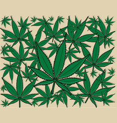 green cannabis leaf background vector image